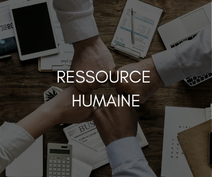 stage ressources humaines